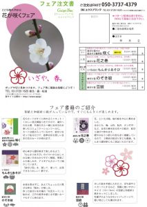 注文書・花が咲くフェアをダウンロード
