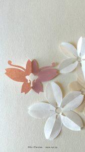 花を待つ壁紙