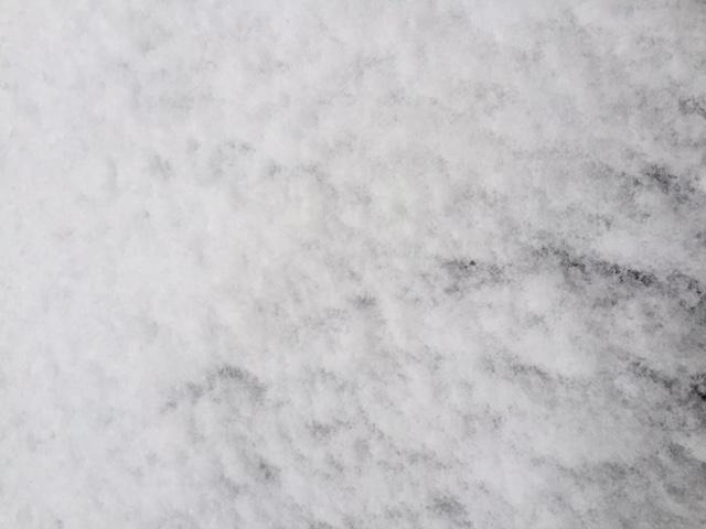 20180122初雪@エクスプランテ